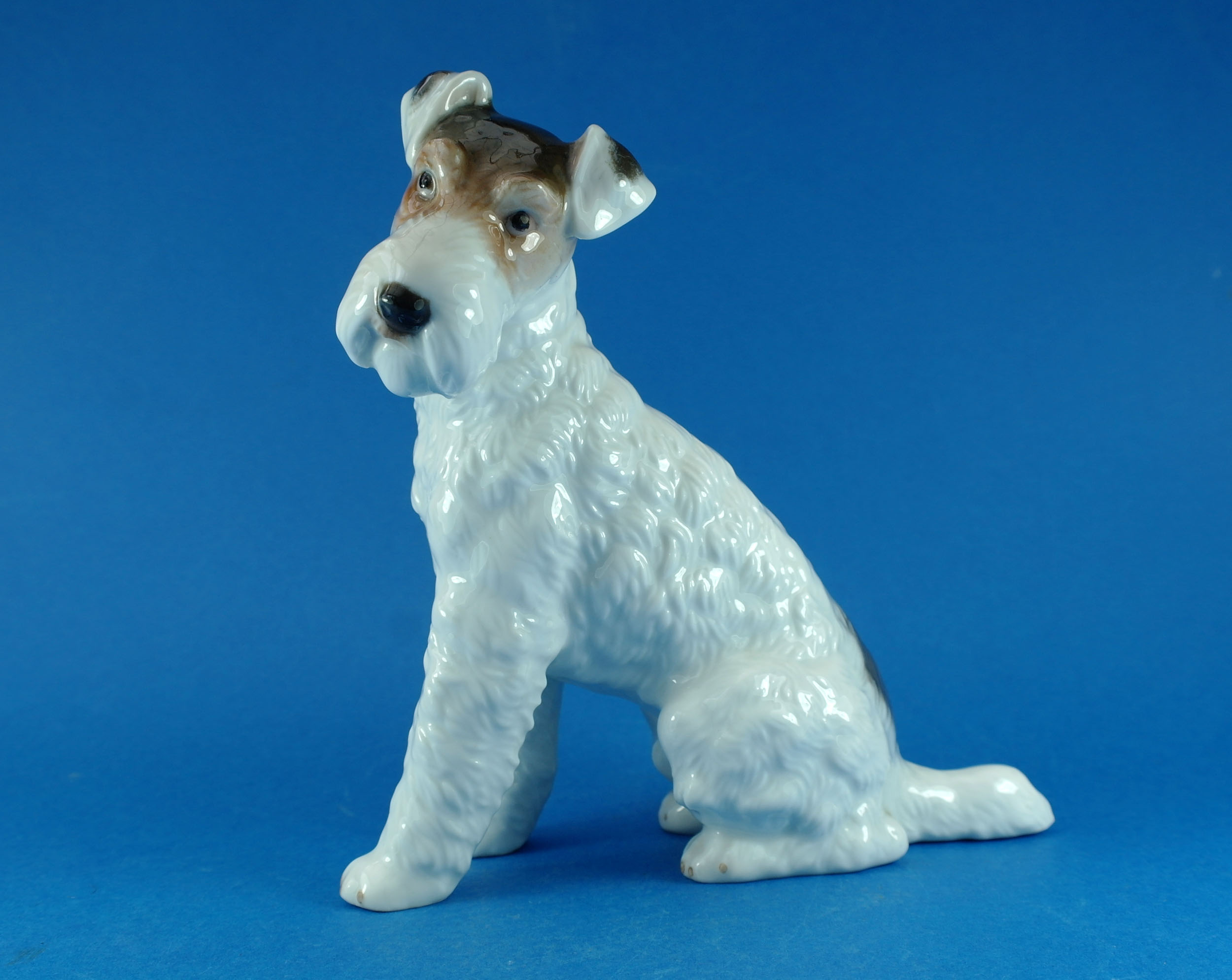 Wire Haired Fox Terrier – Rosenthal – 20th Century Glamour